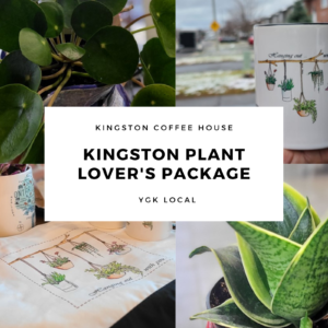 Kingston Plant lover